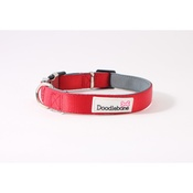 Doodlebone - Bold Padded Collar - RED