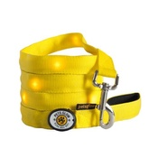 PetsGlow - Outshined LED Dog Lead - Yellow