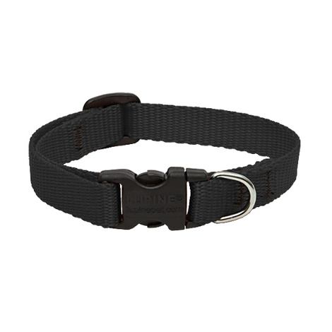 "1"" Width Black Lupine Dog Collar"