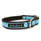Salt Dog Studios - Classic Brown on Aqua Polka Dots Dog Collar