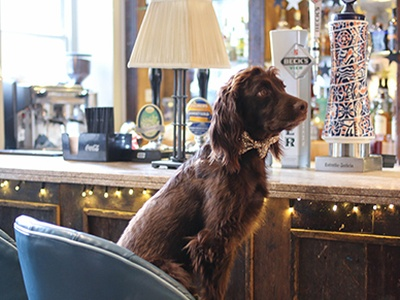 Stylish Pubs with Rooms