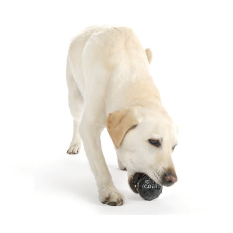 Coal Dog Ball 2