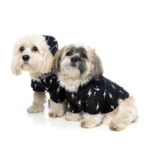 Bolt Dog Raincoat