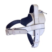 The Paws Pet Supplies - Colour Fusion Leather Harness – White