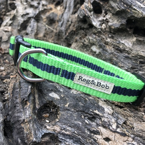 Green Dog Collar 2