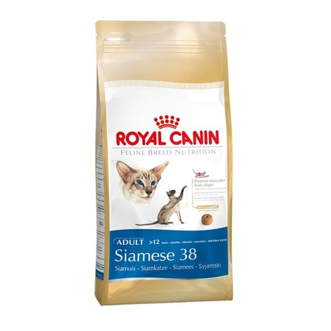 Siamese 38 Cat Food