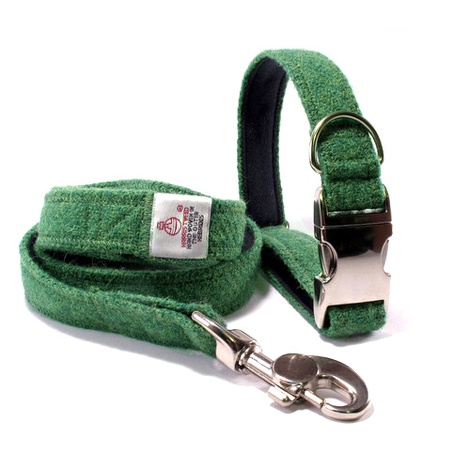 Bright Green Collar & Lead Set
