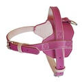 Colour Fusion Leather Harness – Pink