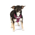 Reflective Airmesh Dog Harness – Purple 6