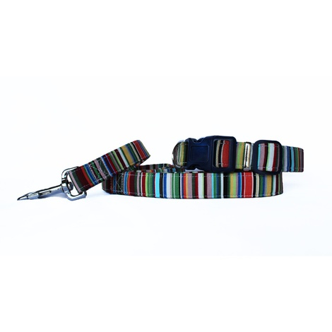 Deckchair Stripes Dog Collar 3