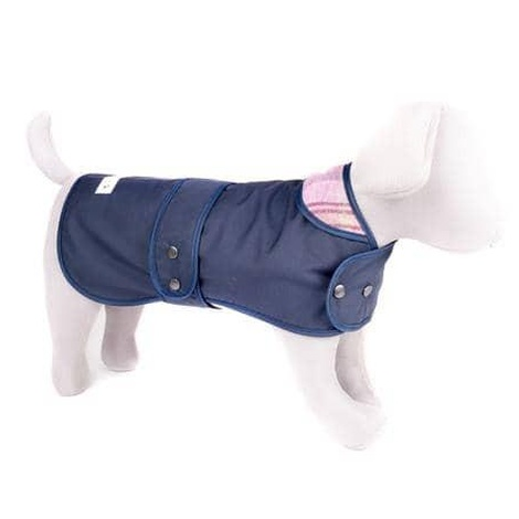 Navy & Pink Shetland Wool Coat by Teddy Maximus