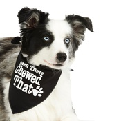 Pet Pooch Boutique - Been There Chewed That Dog Bandana – Black