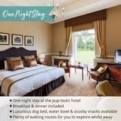 PetsPyjamas - Down Hall Hotel & Spa Exclusive One Night Stay Voucher