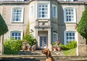 Combe Grove Hotel, Bath 4