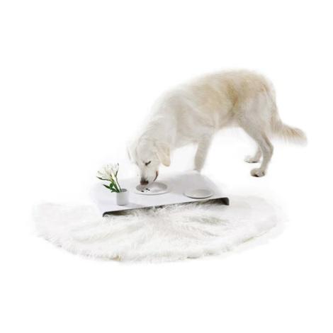 Room Service Dog Bowls & Tray