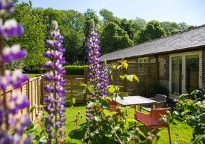 Melstock Cottage - Greenwood Grange, Dorset 4