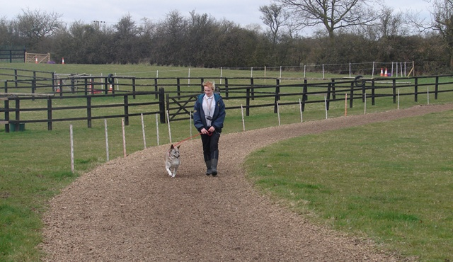 London & Essex Kents Farm Kennels & Catteries 7