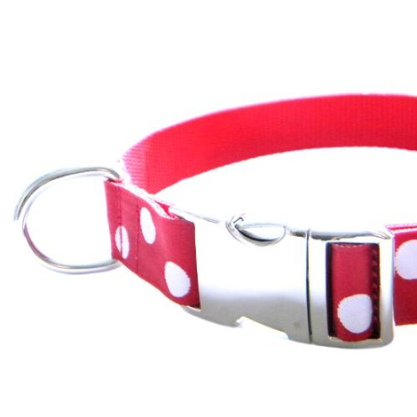 White Dots on Red Dog Collar 3