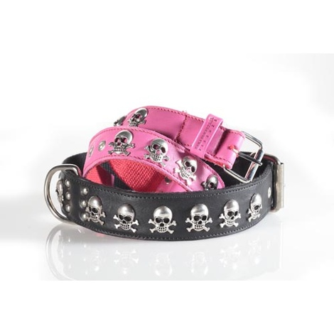 Fashion Collar with Large Skull & Cross Bones in Brown 3