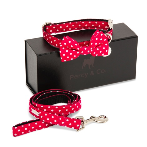 The York Bow Tie and Lead Set