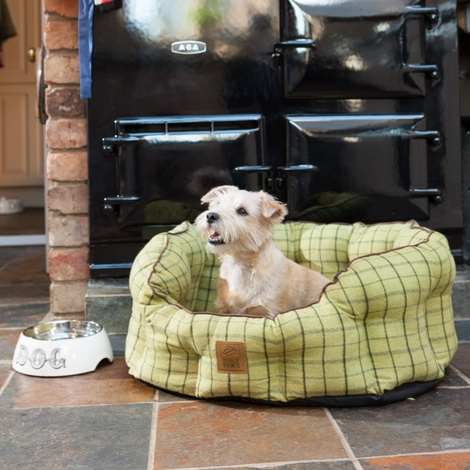 Tweed Oval Snuggle Dog Bed – Green 5