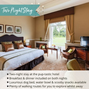 Down Hall Hotel & Spa Exclusive Two Night Stay Voucher