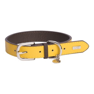 DO&G Leather Dog Collar - Yellow