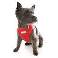 Airmesh Dog Harness – Red 6