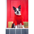 Cable Knit Cashmere Dog Sweater - Lipstick 2