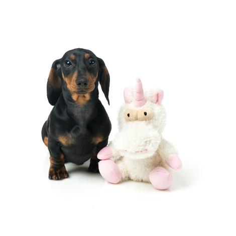 Little Electra The Unicorn Plush Dog Toy 2