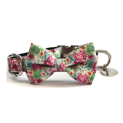 Collar and Bow Tie - Clifton 2