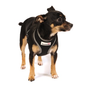 Reflective Airmesh Dog Harness – Black