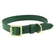 Clementine est. Dogs - Flat Beaton Collar - Green
