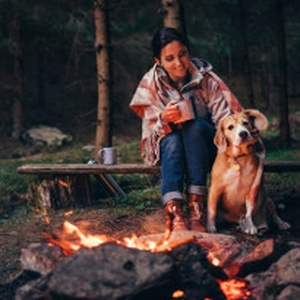 Here's everything you need for a camping adventure with your pet