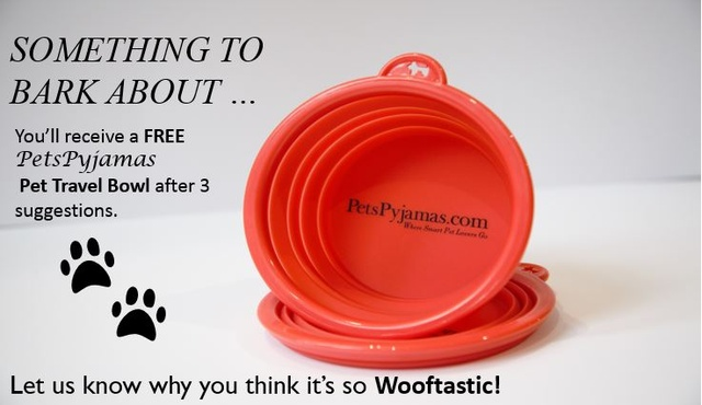 L'Escargot London 14