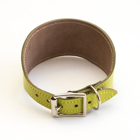 Shweshwe Kiwi Hound Collar 2