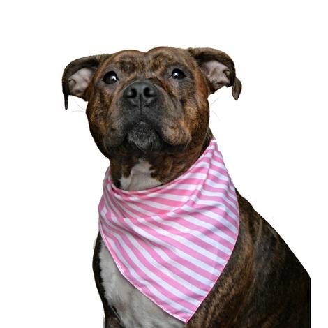 Pink Striped Dog Bandana