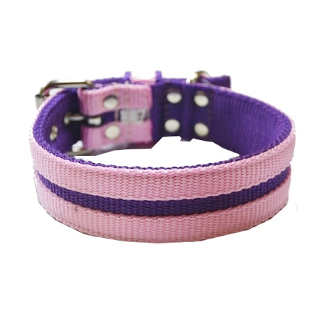 Candy Strip Collar - Purple & Baby Pink 2