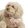 Cream Vintage Primrose Dog Bandana