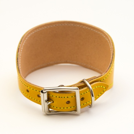 Kikoy Botanical Stripe Hound Collar 3