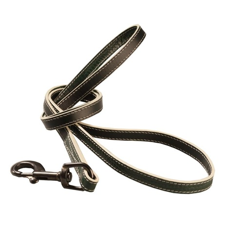Paris Croc Dog Lead – Forest Green & Stone