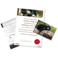 Adopt A Bear Gift Box 3