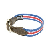 Dogs & Horses - Red, White & Blue Wide Striped Webbing Collar