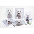 Personalised Plastic Photo of Your Pet 2