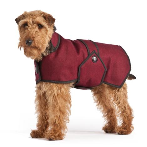 Maroon Wool Blazer Dog Coat