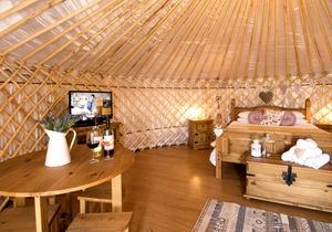 Primrose Yurt, Cornwall 2