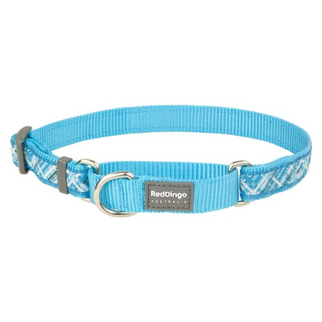 Flanno Martingale Dog Collar – Turquoise