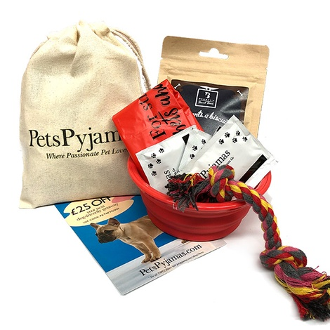 Pet Essentials Kit Pack of 5