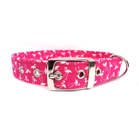 Flamingo Buckle Dog Collar