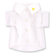 Chihuy - Dog Clothing Yellow Shirt